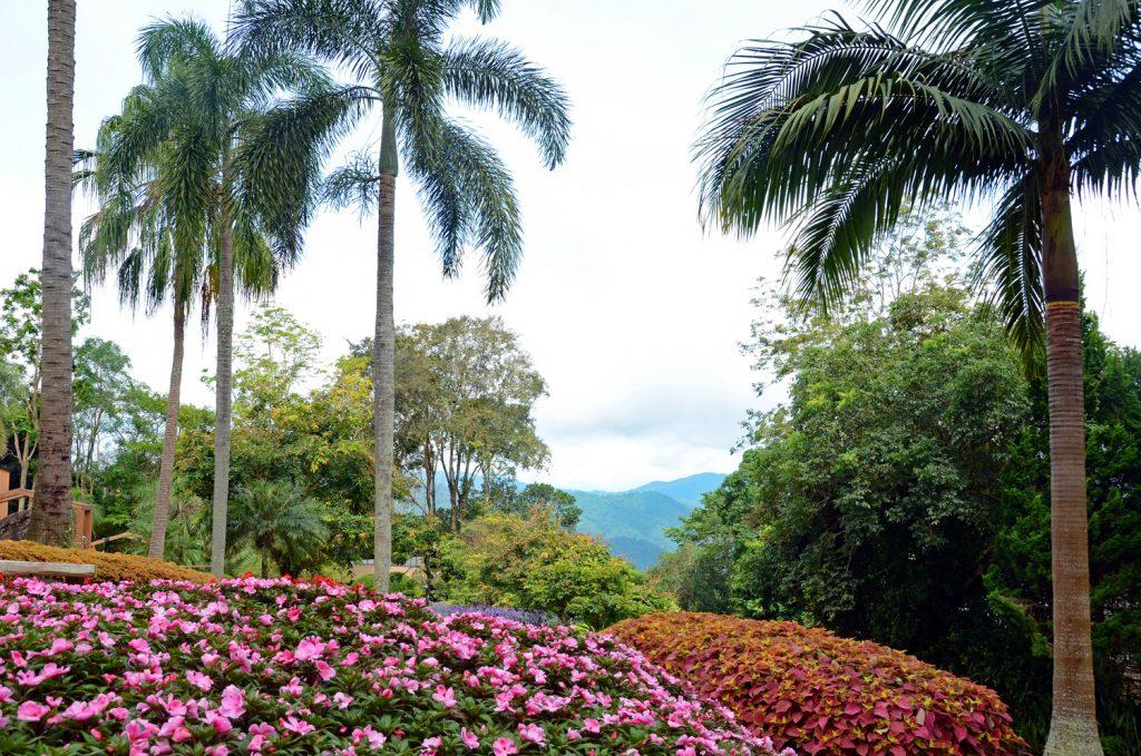 Mae Fa Luang Garten